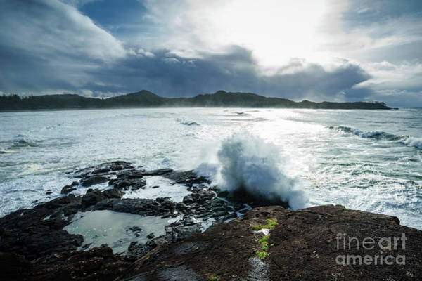 Photograph - Pettinger Point by Carrie Cole