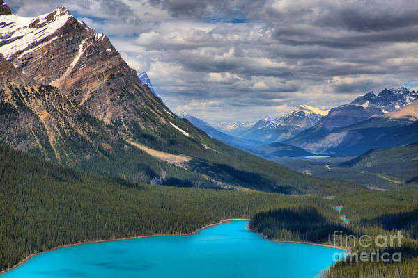 Photograph - Peyto In The Rockies by Adam Jewell