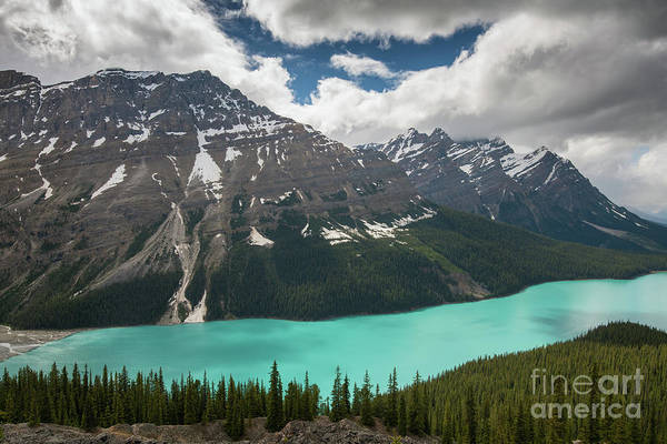 Peyto Lake Wall Art - Photograph - Peyto Lake Aqua Waters by Mike Reid