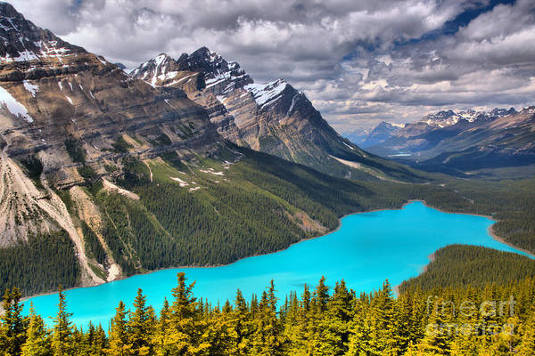 Photograph - Peyto Lake Between The Peaks by Adam Jewell