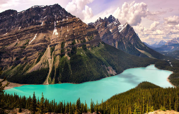 Photograph - Peyto Lake by Claudia Abbott
