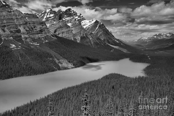 Photograph - Peyto Lake Endless Blues Black And White by Adam Jewell