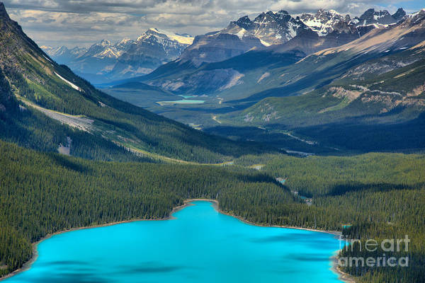 Photograph - Peyto Outflow by Adam Jewell