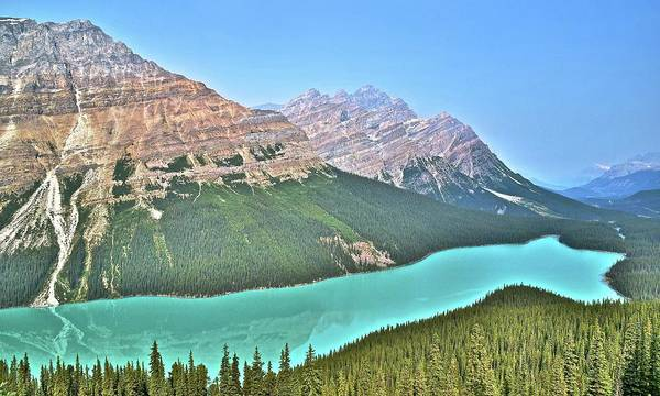 Wall Art - Photograph - Peyto Panorama by Frozen in Time Fine Art Photography
