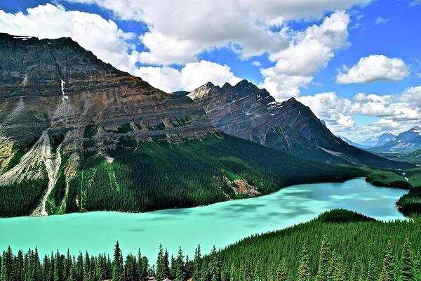 Wall Art - Photograph - Peyto Perfection by Frozen in Time Fine Art Photography