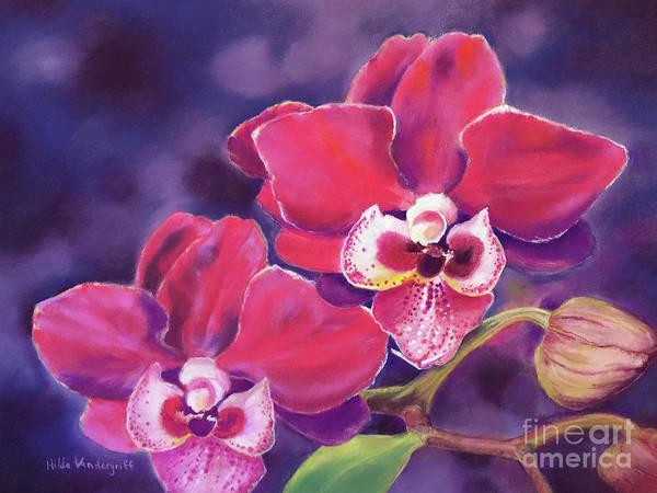 Painting - Phalaenopsis Orchid by Hilda Vandergriff