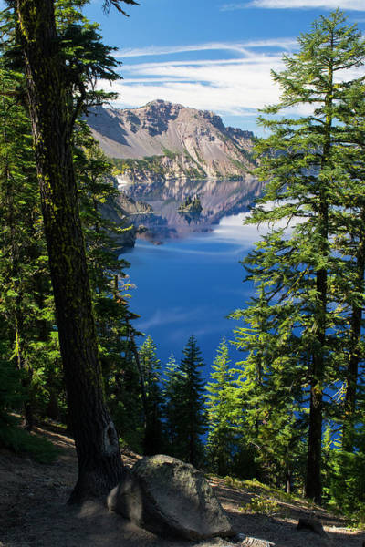 Photograph - Phantom Ship Island Crater Lake by Frank Wilson