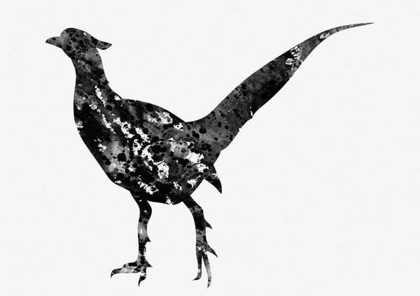 Pheasant Digital Art - Pheasant-black by Erzebet S
