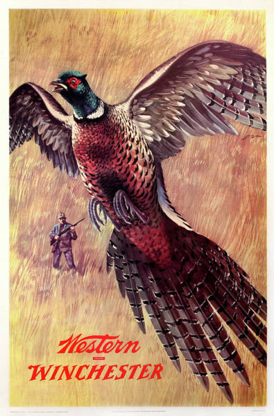 Painting - Winchester-western Pheasant Hunting by Weimer Pursell