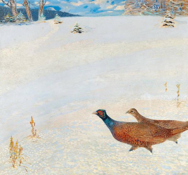 Wall Art - Painting - Pheasants In A Winter Landscape by Hugo Baar