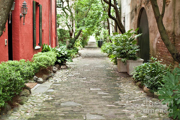 Philadelphia Alley Charleston Pathway Art Print