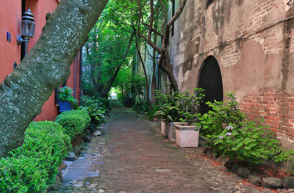 Photograph - Philadelphia Alley In Charleston Sc by Donnie Whitaker