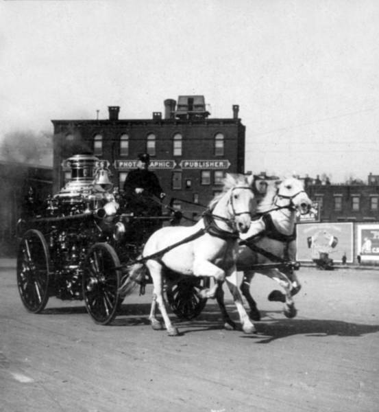 Fire Department Photograph - Philadelphia Fire Department Engine - C 1905 by International  Images