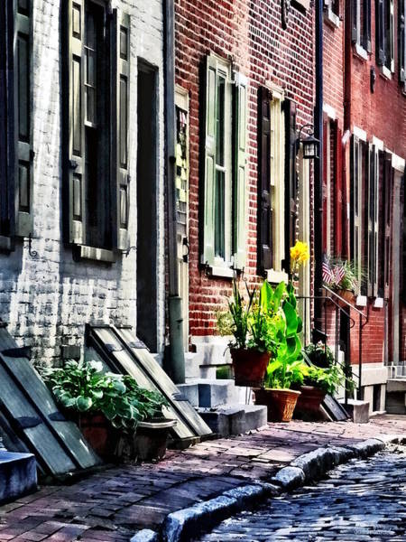 Photograph - Philadelphia Pa Street With Flower Pots by Susan Savad