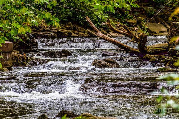 Photograph - Philbrick Rapids by William Norton