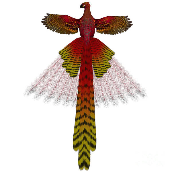Reborn Wall Art - Painting - Phoenix Firebird by Corey Ford