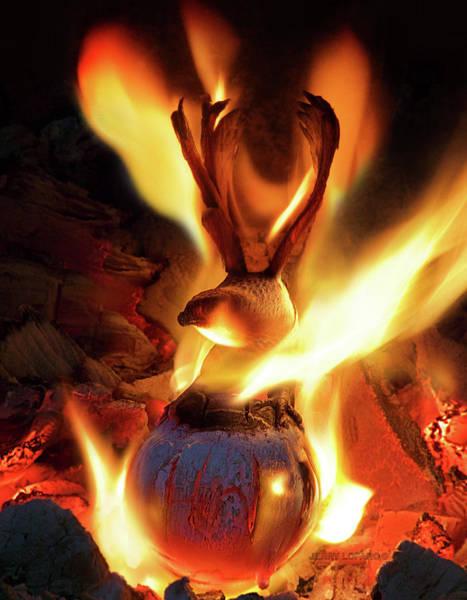 Fire Photograph - Phoenix by Jerry LoFaro