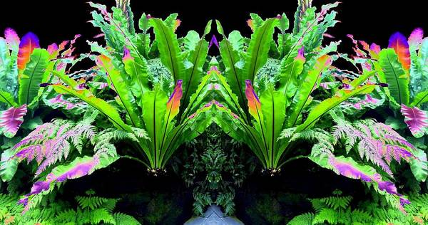 Borden Digital Art - Photo Synthesis 11 by Will Borden