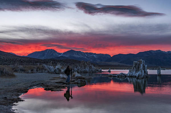 Wall Art - Photograph - Photographer At Mono Lake by Cat Connor
