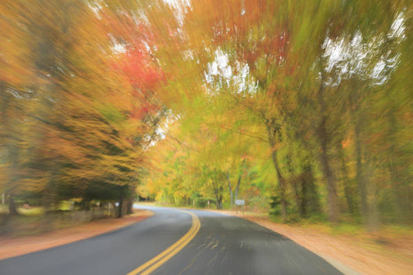 Photograph - Photographic Impressionism  by Kyle Lee