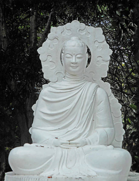 Vung Tau Photograph - Phu My Statues 2 by Ron Kandt