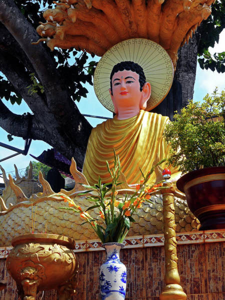 Vung Tau Photograph - Phu My Temples 15 by Ron Kandt