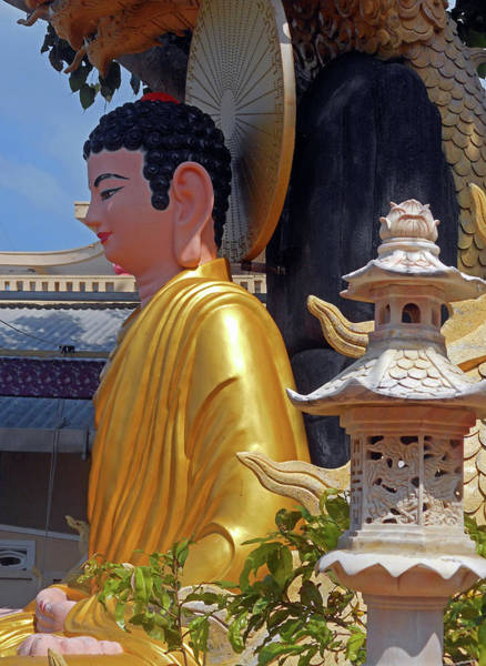 Vung Tau Photograph - Phu My Temples 17 by Ron Kandt