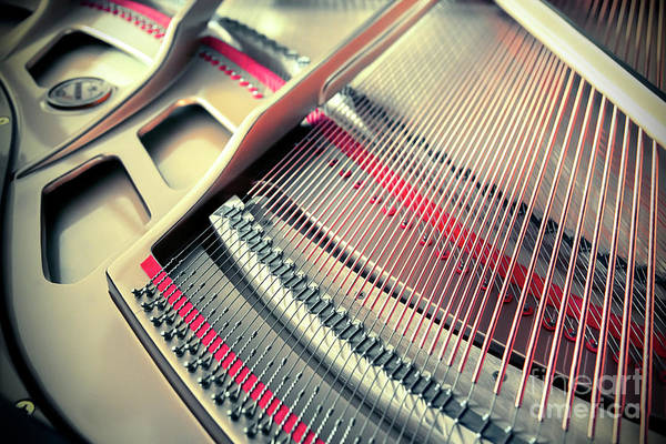 Photograph - Piano Inside by Ariadna De Raadt