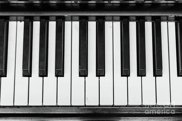 Photograph - Piano Keys Black And White by Edward Fielding