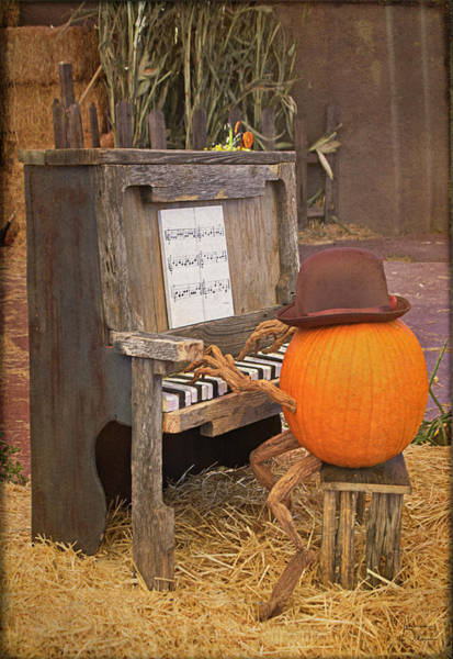 Photograph - Piano Man Vertical by Teresa Wilson