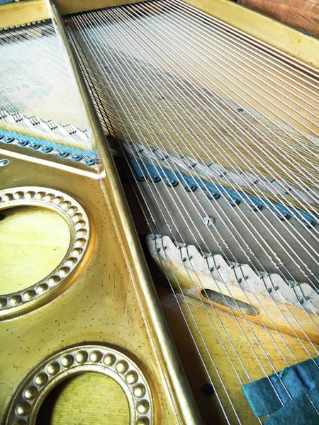 Grand Piano Photograph - Piano Strings by Tom Gowanlock
