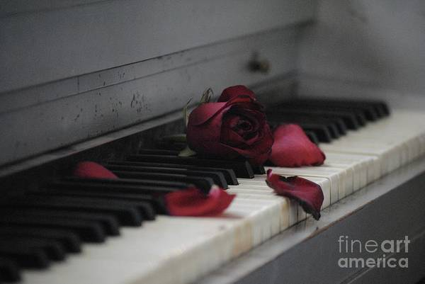 Photograph - Piano With Vintage Rose by The Art of Alice Terrill
