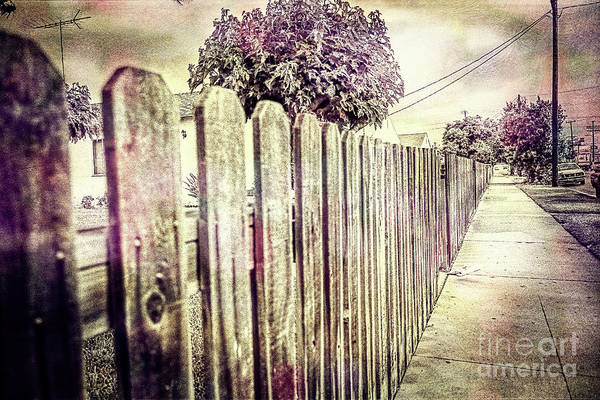 Picket Fence Along The Boulevard In Color Tones Art Print