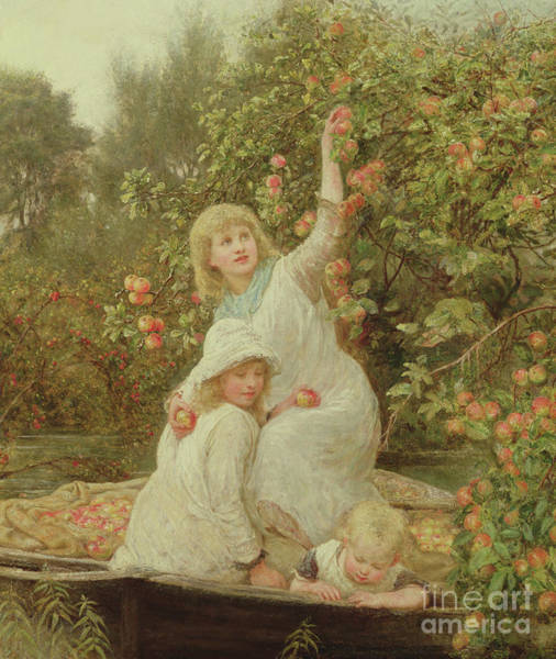 Apple Orchard Painting - Picking Apples by Frederick Morgan