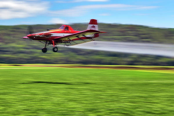 Photograph - Picking It Up And Putting It Down - Crop Duster - Arkansas Razorbacks by Jason Politte