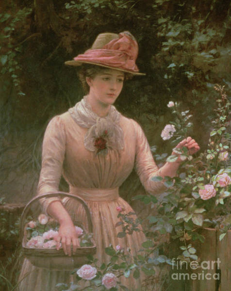 Pickers Wall Art - Painting - Picking Roses by Charles Sillem Lidderdale