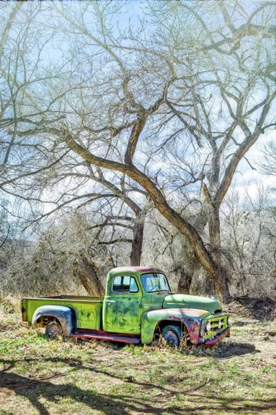 Photograph - Pickup Under A Tree by Robert FERD Frank