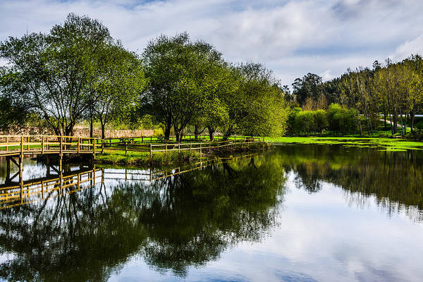 Wall Art - Photograph - Picnic Area In The Marnel River IIi by Marco Oliveira