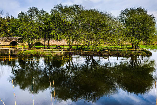 Wall Art - Photograph - Picnic Area In The Marnel River Iv by Marco Oliveira