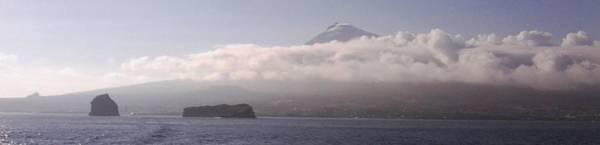 Photograph - Pico Island, Azores by Julia Woodman