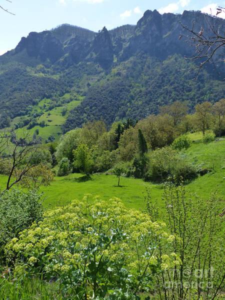 Photograph - Picos De Europa - Springtime by Phil Banks