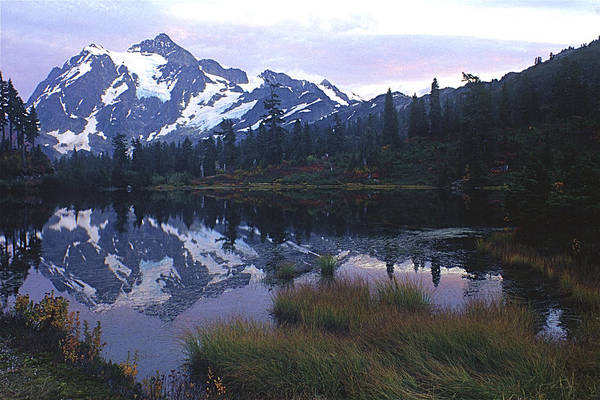 Photograph - Picture Lake - Mt. Shuksan by Todd Kreuter