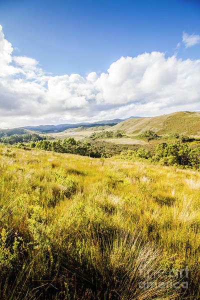 Discovering Wall Art - Photograph - Picturesque Tasmanian Field Landscape by Jorgo Photography - Wall Art Gallery