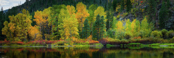 Wall Art - Photograph - Picturesque Tumwater Canyon by Dan Mihai