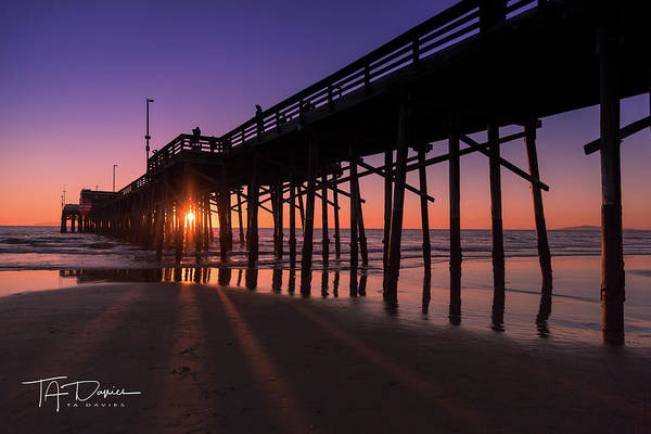 Photograph - Pier In Purple by T A Davies
