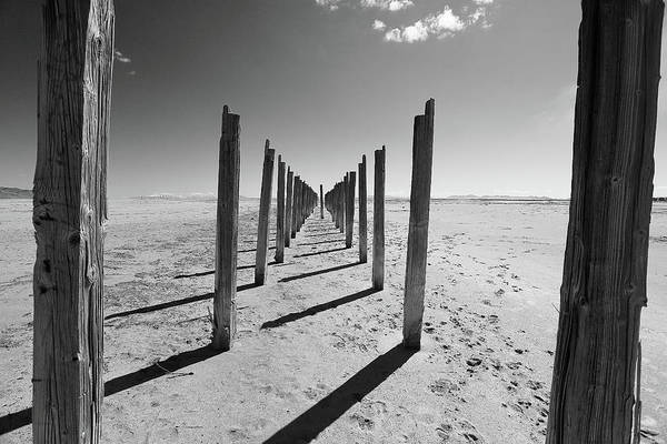 Photograph - Pier Posts by David Andersen