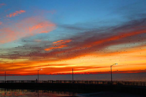 Lighthouse Wall Art - Photograph - Pier Sunrise by Michael Rucker