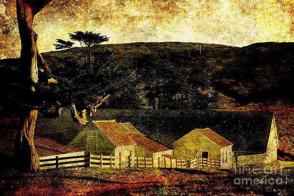 Photograph - Pierce Point Ranch 18 . Texture by Wingsdomain Art and Photography
