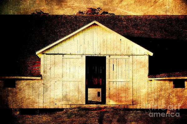Photograph - Pierce Point Ranch 9 . Texture by Wingsdomain Art and Photography