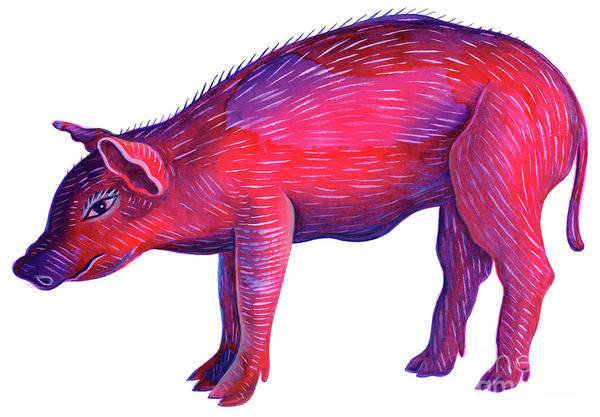 Wall Art - Painting - Pig by Jane Tattersfield